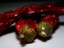Hvordan unngå mage Burn Med Capsaicin
