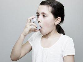 Inhalatorer som inneholder soya