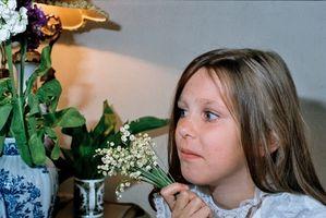 Tilskudd til familier av kritisk syke barn