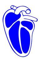 Hva er årsakene til forstørret hjerte ventiler?