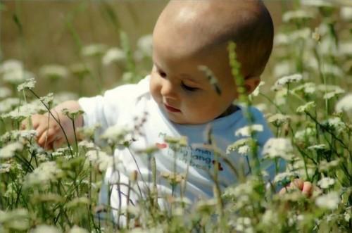 Naturlige vitaminer for spedbarn og småbarn