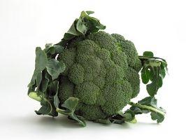 Hvilke matvarer inneholder lite eller ingen karbohydrater?