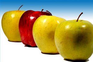 Om Nutritional Konsulent programmer