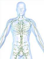 Typer av Chemo for Behandling av Hodgkins lymfom