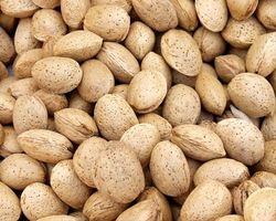 Egenskapene fra Sweet Almond Oil