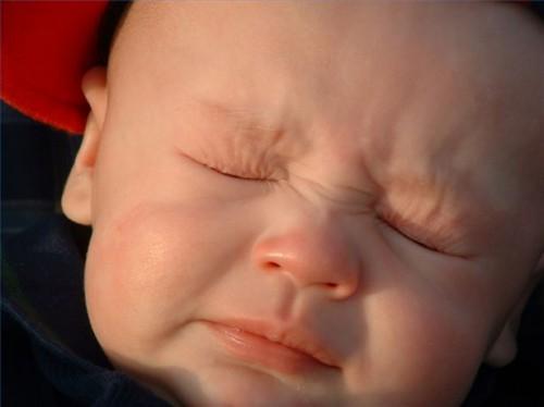 Pet Allergi hos babyer
