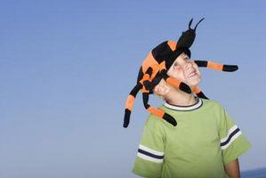 Hvordan håndtere med Arachnophobia