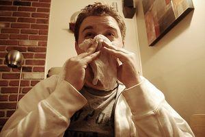 Nasal Stuffiness Allergi urte rettsmidler