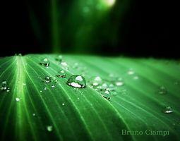 Farene ved Antioxidant Vann ionizers