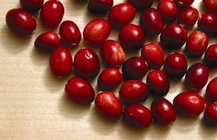 Cranberry Helse Fordeler