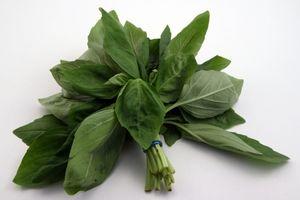Hvordan Heal med urter