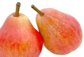 Bruk av Fruktose