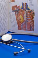 Årsaker til Vertebral Hemangiomer