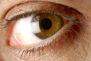 Hva Eye og hårfarger er Dominant?