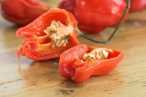 Cayenne Pepper Diet Instruksjoner