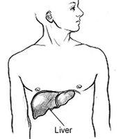 Hvordan identifisere typer hepatitt