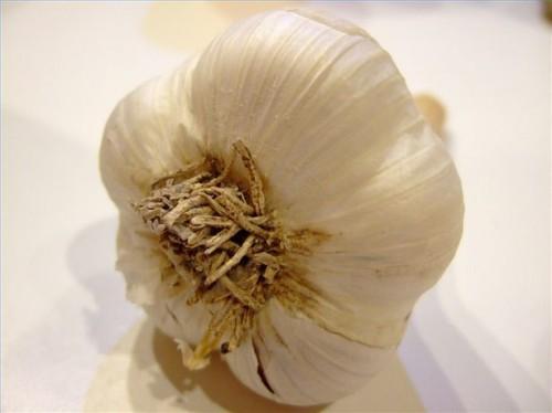 Bivirkninger av hvitløk