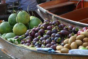 Er Thai Mangostan en god antioksidant?