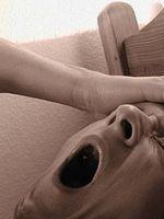 Hvordan finne et talerør for Snorking