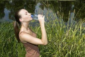 Hvordan lage Alkaline Vann Med Minerals