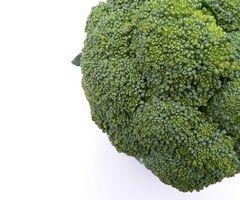 Liste over Foods høy i fytokjemikalier