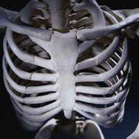 Arm øvelser med Sternal Forholdsregler
