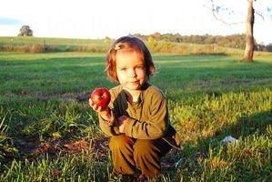 Hvordan behandle insektbitt på en Toddler