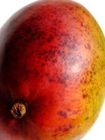 Hvordan lage en tannkrem Out of Mango Seed