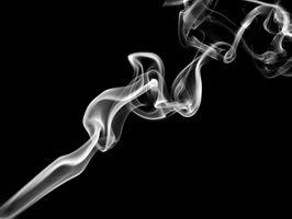 Å leve med en røyker