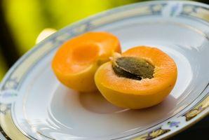 Hva er fordelene med aprikos frø?