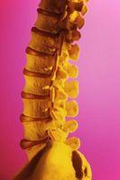 Symptomene på svulmende L4-L5 Discs