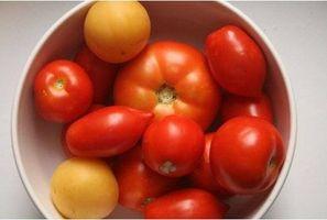 Fakta om vegetariske dietter