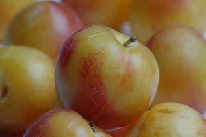 Fordelene av Fruktose