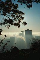 Hvordan Hjelp jeg stopper den negative effekten av luftforurensning?
