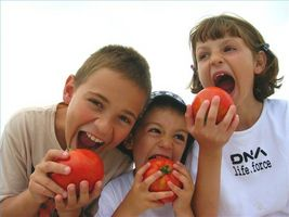 Frukt allergi hos barn