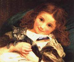 Katt allergi hos små barn