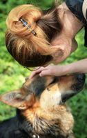 Midd som påvirker hunder og mennesker