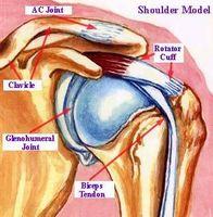 Hva er en Rotator Cuff Tear i en skulder?