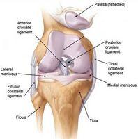 Hvordan diagnostisere Knee Pain