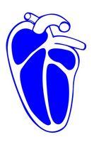 Toddler & ervervet hjertesykdom