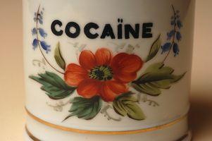 Hvorfor bruker folk kokain?