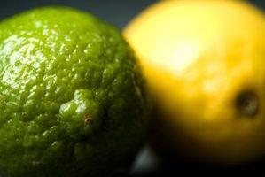 Hva slags mat er høy i sitronsyre?