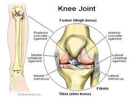 Knee Brusk Pain