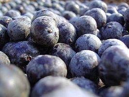 Hvordan å gjøre en Acai Berry Diet