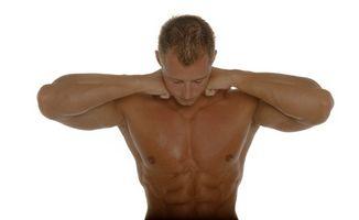 Typisk Bodybuilding Diet