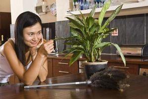 Hva kan jeg gjøre for å drepe Saksedyr & Other Bugs uten bruk av kjemikalier?