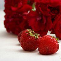 Fordeler med Rose Hofter flytende ekstrakt