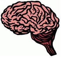 Post-Hjernerystelse Symptomer