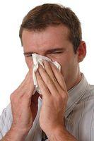 Hvordan vite forskjellen mellom en kald og en allergi