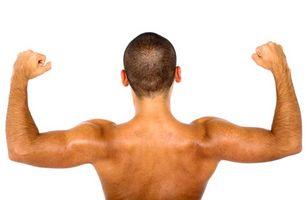 Hvordan lage Arms større med Protein Shakes